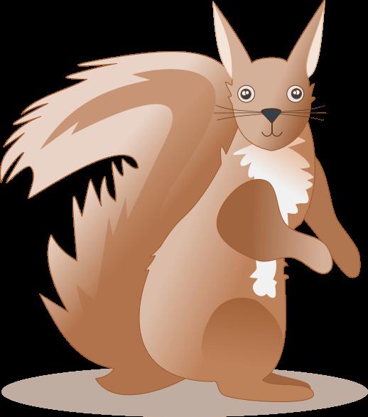 Riimit orava